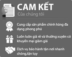 noithatnhaviet-camket
